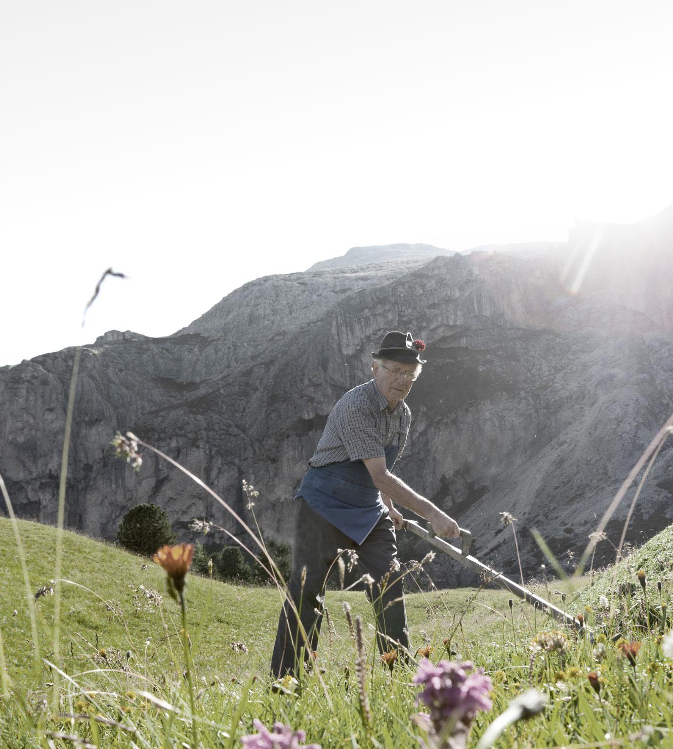Trehs, 100% Natur, Bergheu